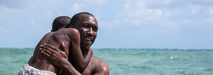 my essay on the movie moonlight and n racial politics   my essay on the movie moonlight and n racial politics